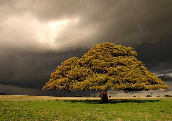 Hail Storm approach