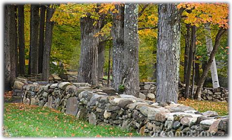 New England rock wall