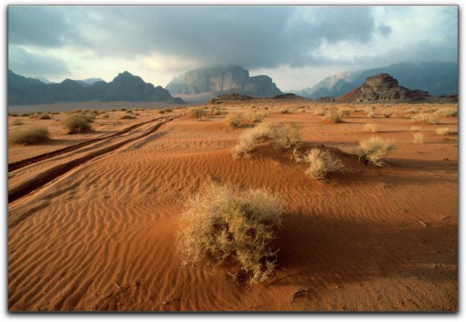 Lenten desert