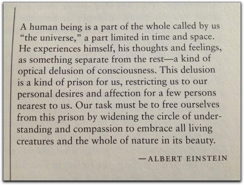Einstein on Consciousness