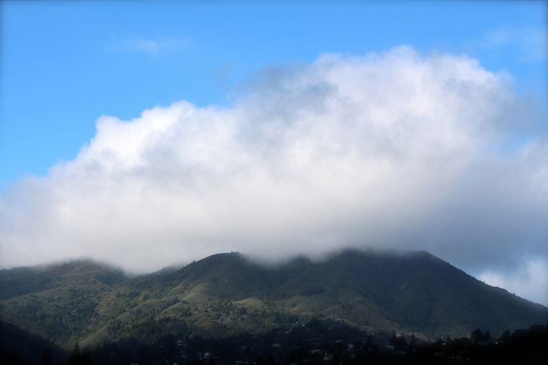 Mt. Tam in cloud