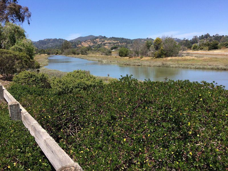 Watercourse