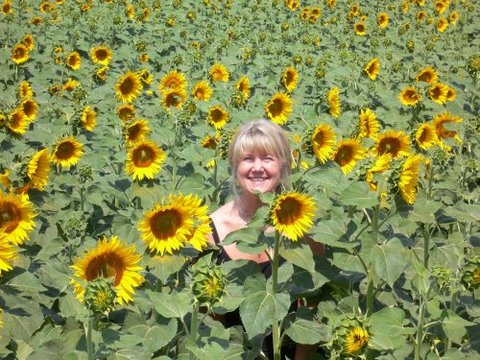 Leigh and other sunflowers