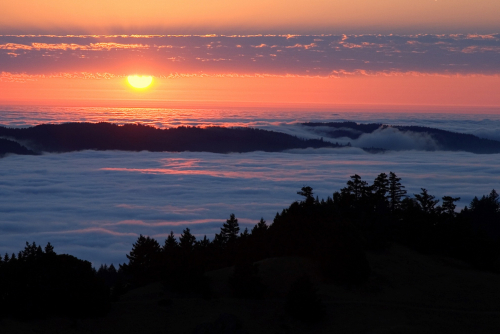 Marin sunset and fog