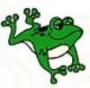 Little_frog_2